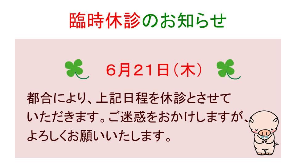 6月ディスプレイ2.jpg
